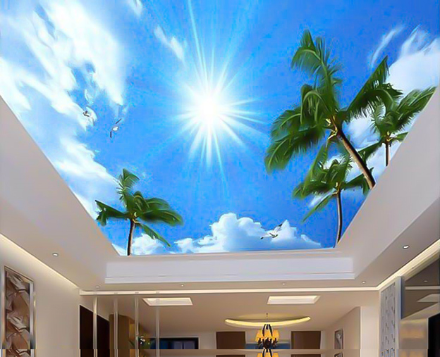 trần xuyên sáng cây dừa